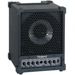 Roland CM-30 Cube Monitor - Monitor coaxial estéreo